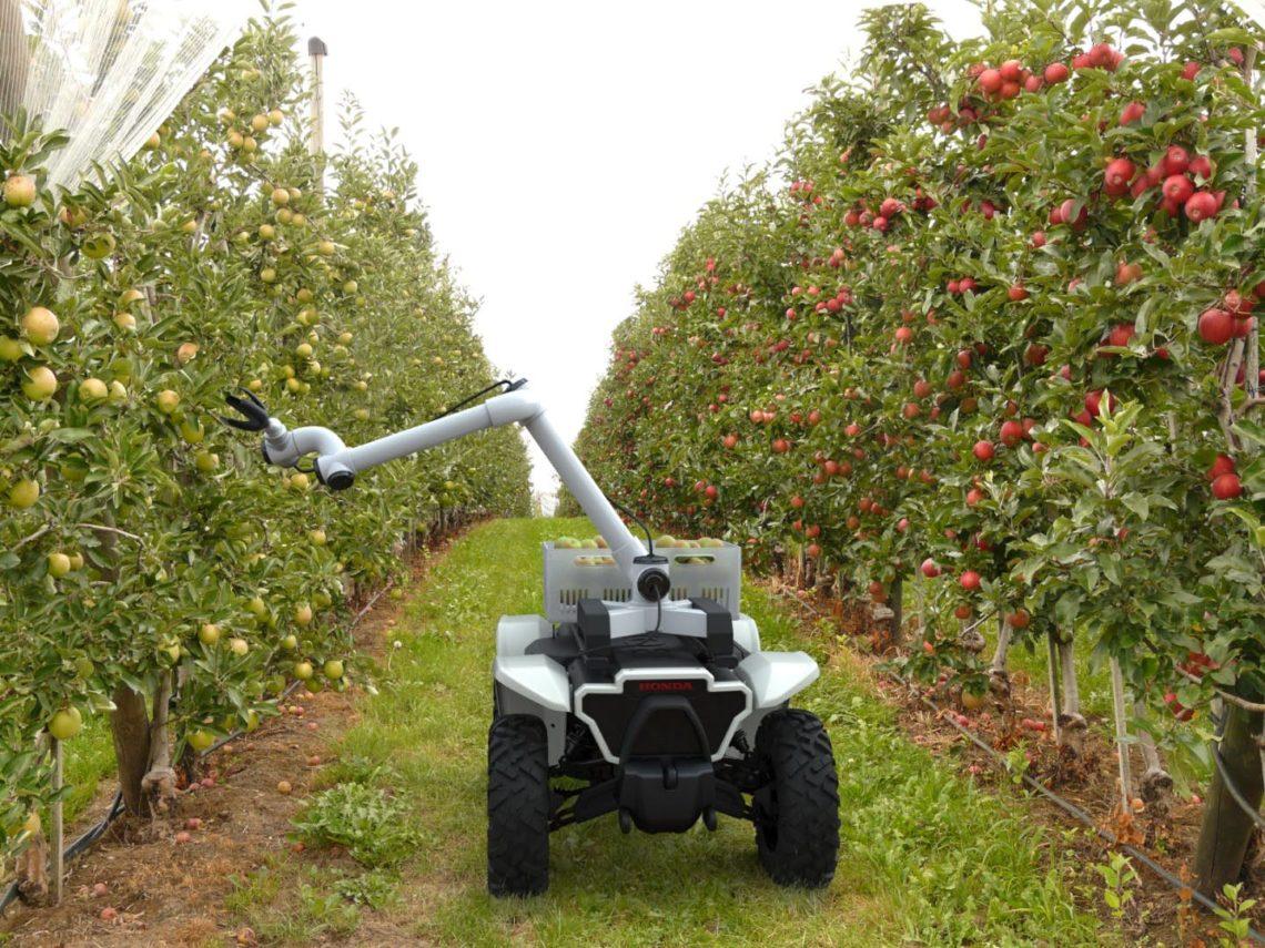 Der-autonome-Helfer-f-r-die-Apfelernte-Honda-3E-D18